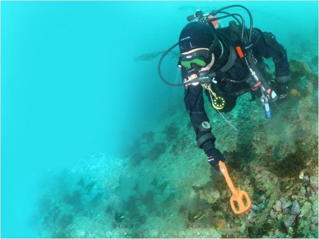 Podwodny wykrywacz metali Quest Scuba Tector pomarańczowy